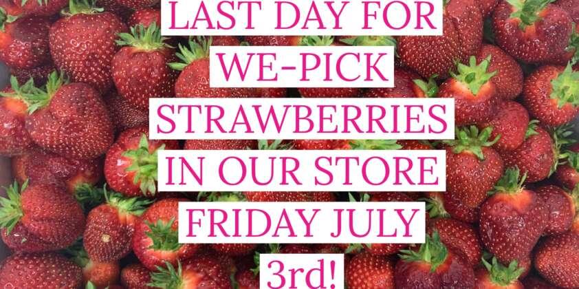 Last Day Of We-Pick Strawberries