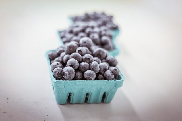 Blueberry Season Done