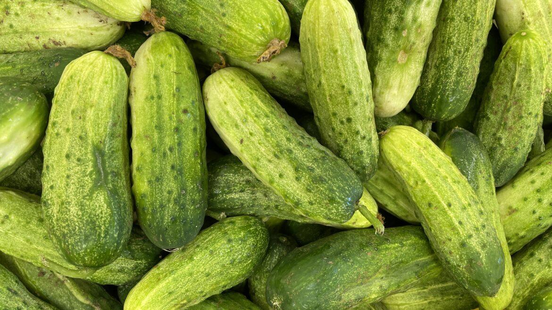 Cucumbers ��